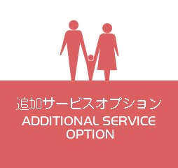 additional service option