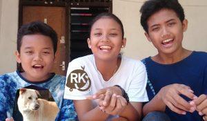 rkprofil for RF